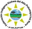 Logo Fikapir (Custom)